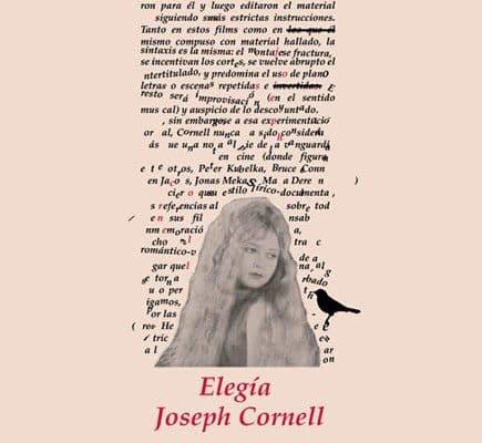 Quel est le genre littéraire de la boîte de merveilles?
